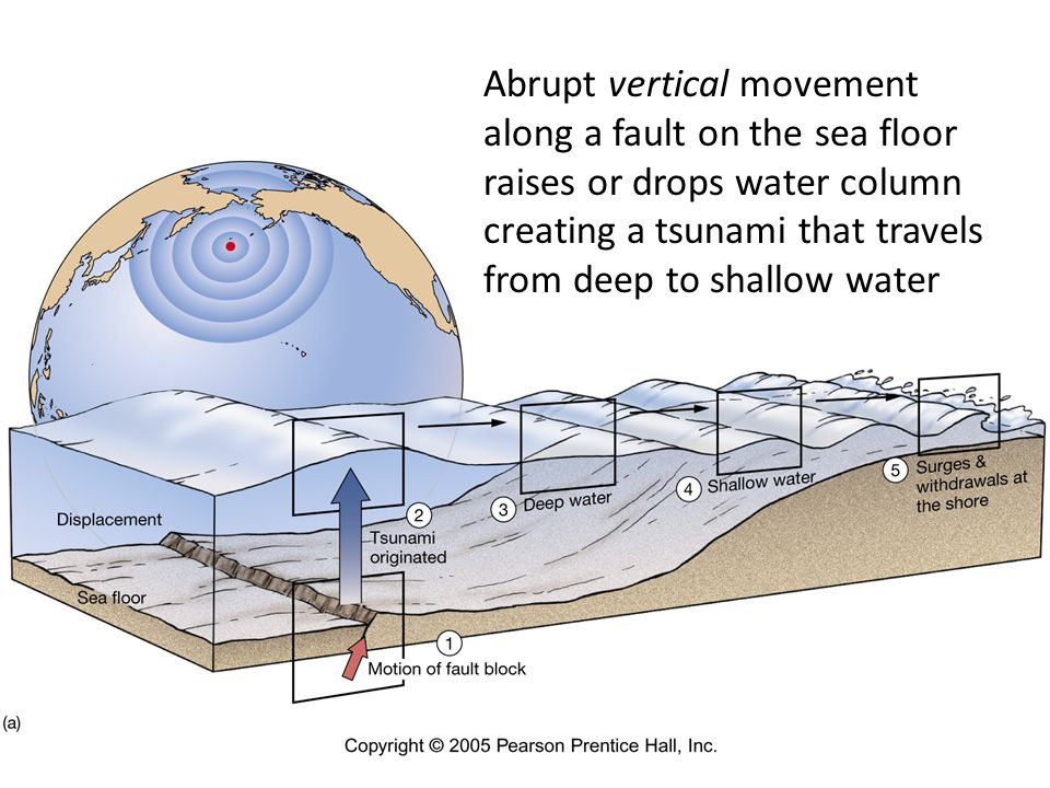 Abrupt vertical movement along a fault on the sea floor raises or drops water column creating a tsunami that travels from deep to shallow water