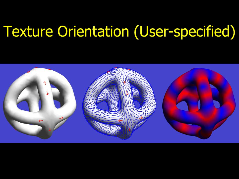 Texture Orientation Methods for orienting textures –user-specified (Turk) –random (Wei/Levoy) –smooth or symmetric (Wei/Levoy)