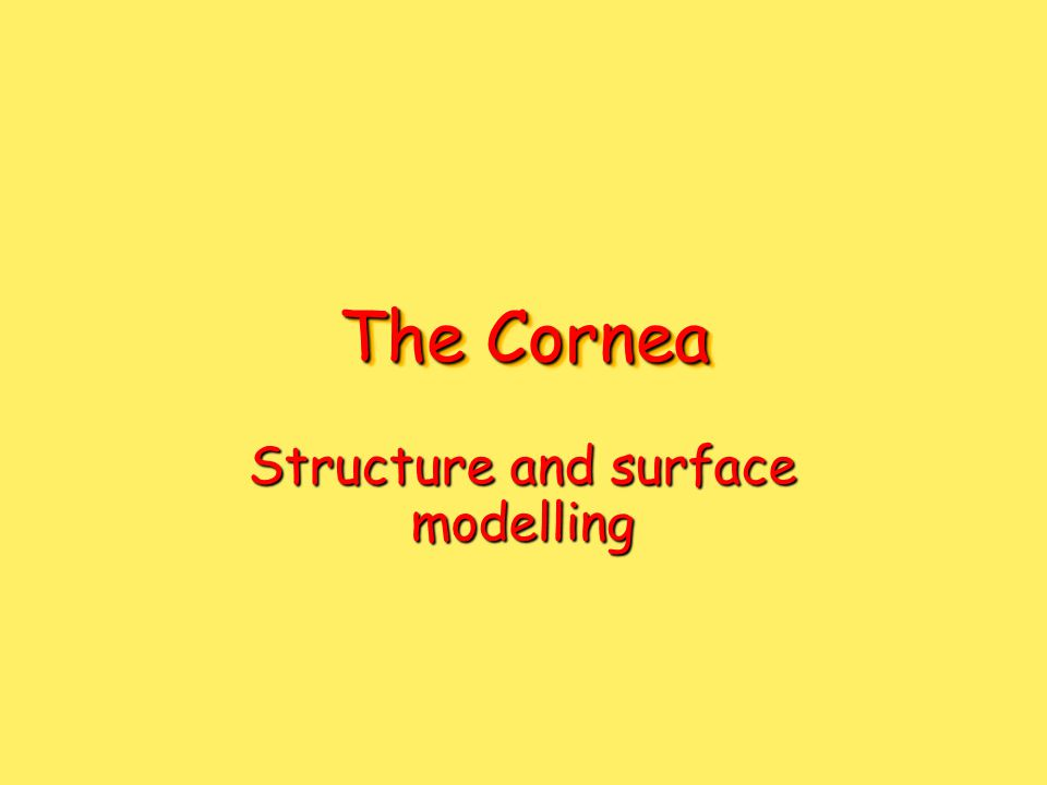 The Cornea Structure and surface modelling