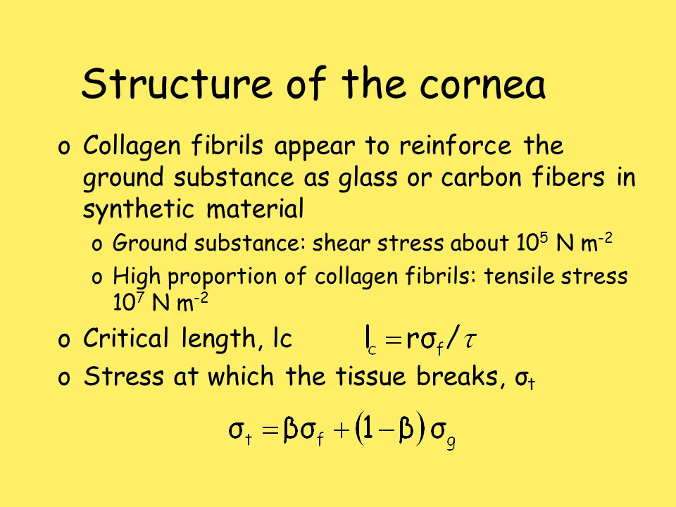 Structure of the cornea oCollagen fibrils appear to reinforce the ground substance as glass or carbon fibers in synthetic material oGround substance: