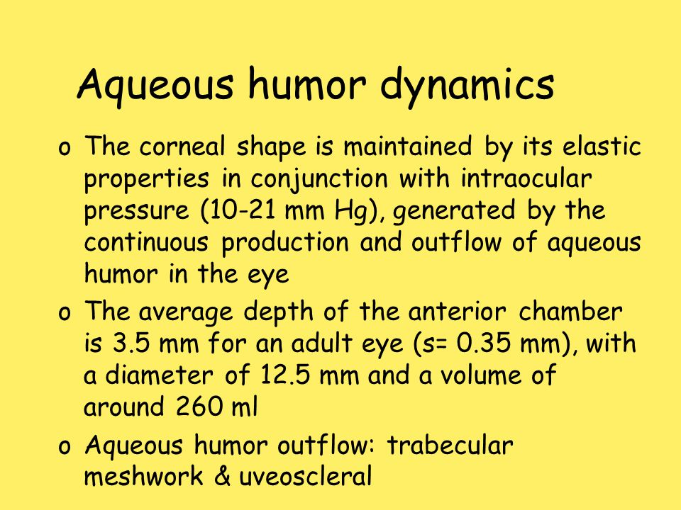 Aqueous humor dynamics oThe corneal shape is maintained by its elastic properties in conjunction with intraocular pressure (10-21 mm Hg), generated by