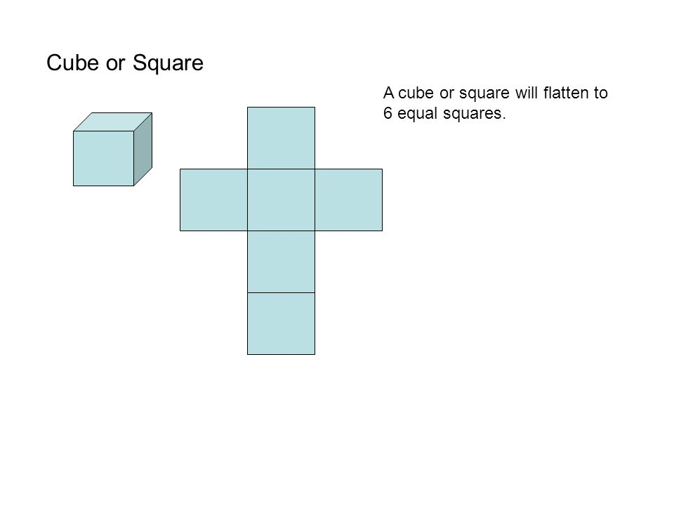 Cube or Square A cube or square will flatten to 6 equal squares.