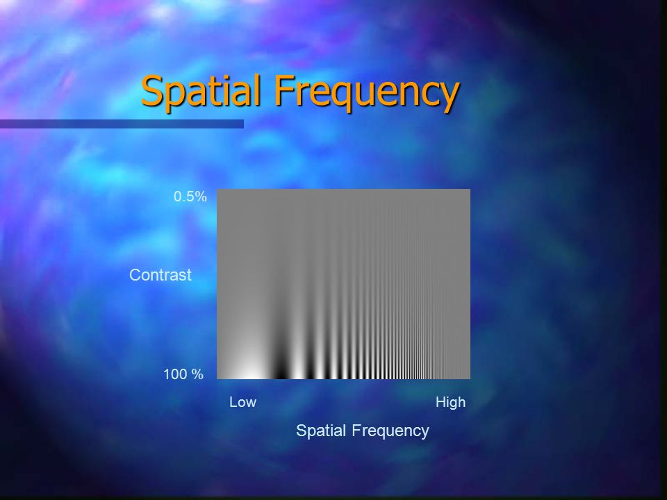 Spatial Frequency Low High 100 % 0.5% Contrast