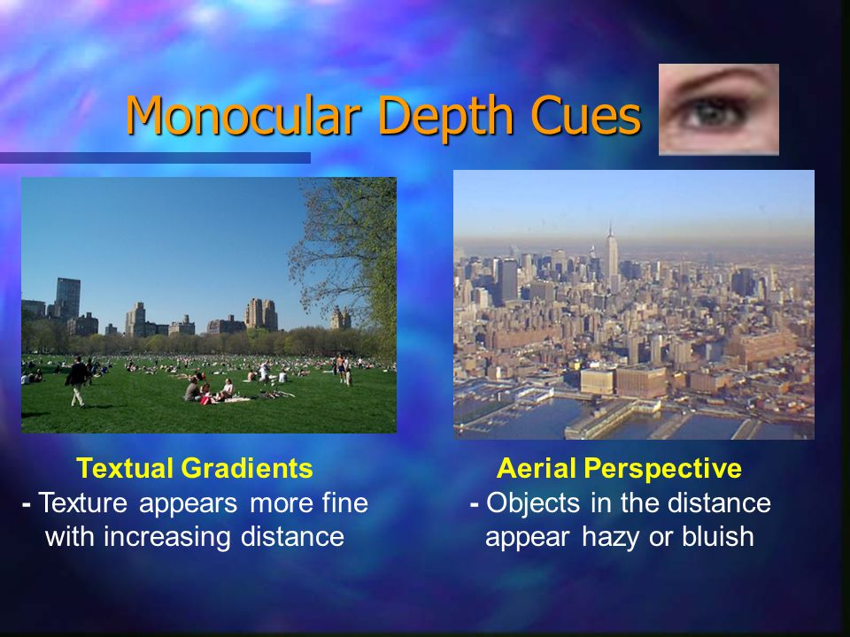 Monocular Depth Cues Textual Gradients - Texture appears more fine with increasing distance Aerial Perspective - Objects in the distance appear hazy or bluish