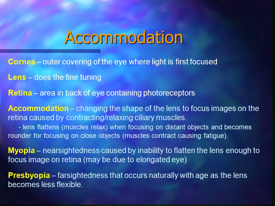 Accommodation Cornea – outer covering of the eye where light is first focused Lens – does the fine tuning Retina – area in back of eye containing photoreceptors Accommodation – changing the shape of the lens to focus images on the retina caused by contracting/relaxing ciliary muscles.