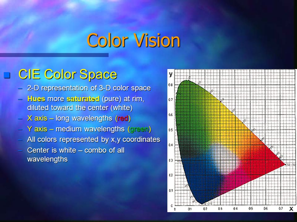 Color Vision Types of color deficiences and color blindness (click to see what color blind see)click to see what color blind see Protanomaly (1% of males) – low sensitivity to red (low λs) Deuteranomaly (6% of males) – low sensitivity to green (med λs shifted to red) Protanopia (<1% of males) – see in shades of blue and yellow – neutral pt as grey Deuteranopia (<1% of males) – see in shades of blue and yellow – neutral pt as grey Tritanomaly/Tritanopia (very rare in both sexes) – blue-yellow deficiency/blindness Monochromacy (extremely rare) – inability to distinguish any colors