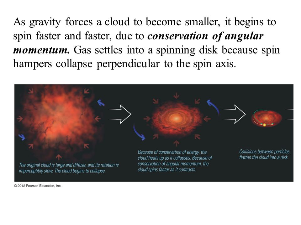 As gravity forces a cloud to become smaller, it begins to spin faster and faster, due to conservation of angular momentum.