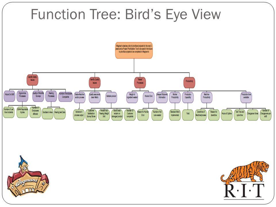 Function Tree: Bird's Eye View