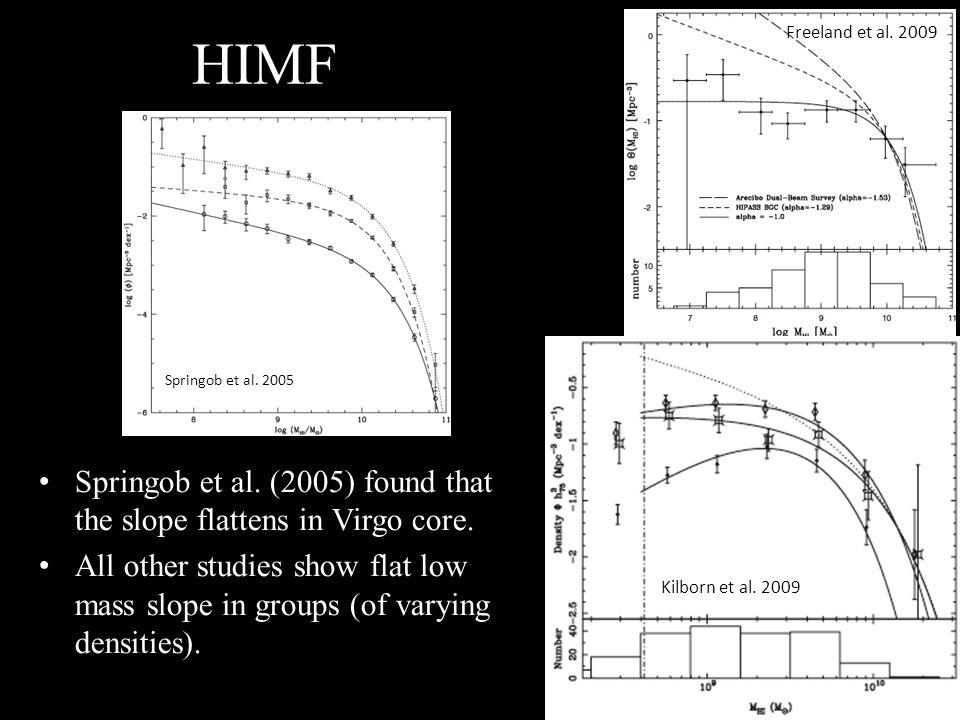HIMF Springob et al. (2005) found that the slope flattens in Virgo core.