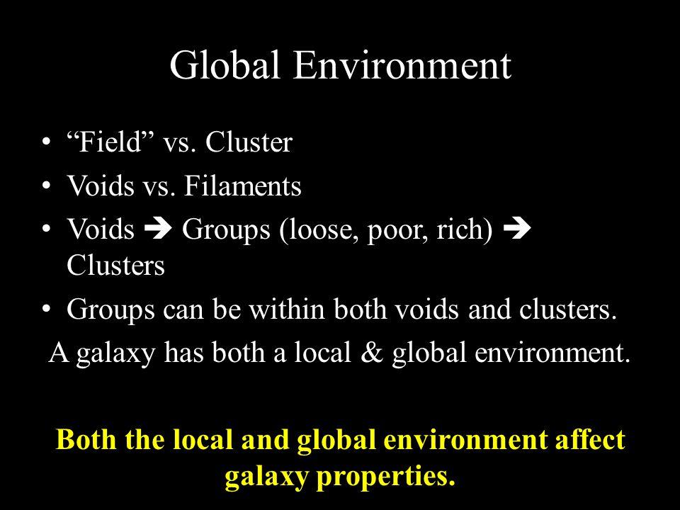 Global Environment Field vs. Cluster Voids vs.