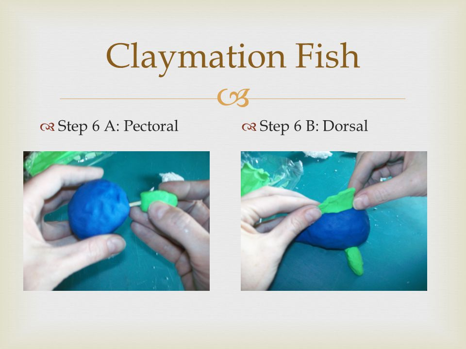   Step 6 A: Pectoral  Step 6 B: Dorsal