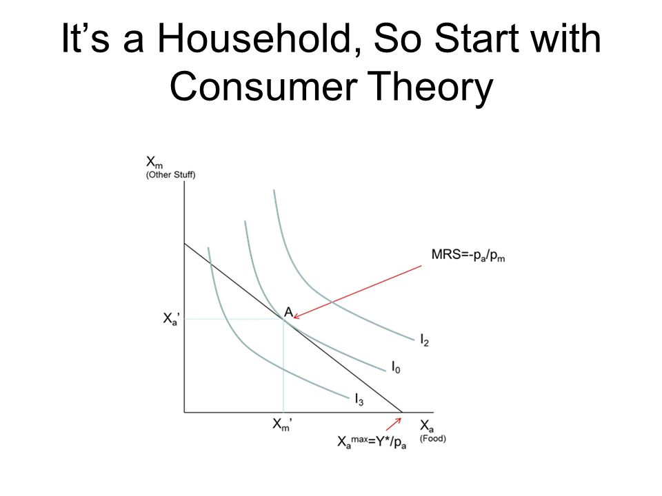 It's a Household, So Start with Consumer Theory