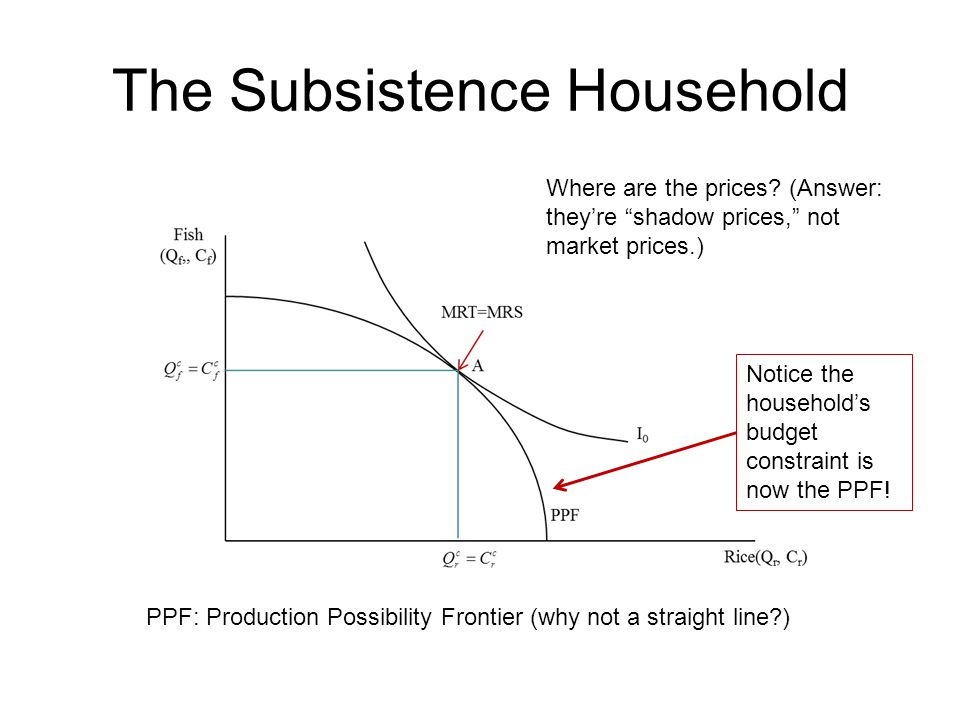 The Subsistence Household Notice the household's budget constraint is now the PPF.