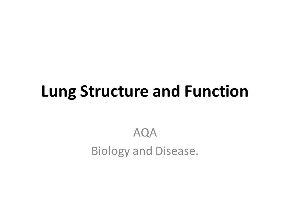 3.1.4 The lungs of a mammal act as an interface with the environment.
