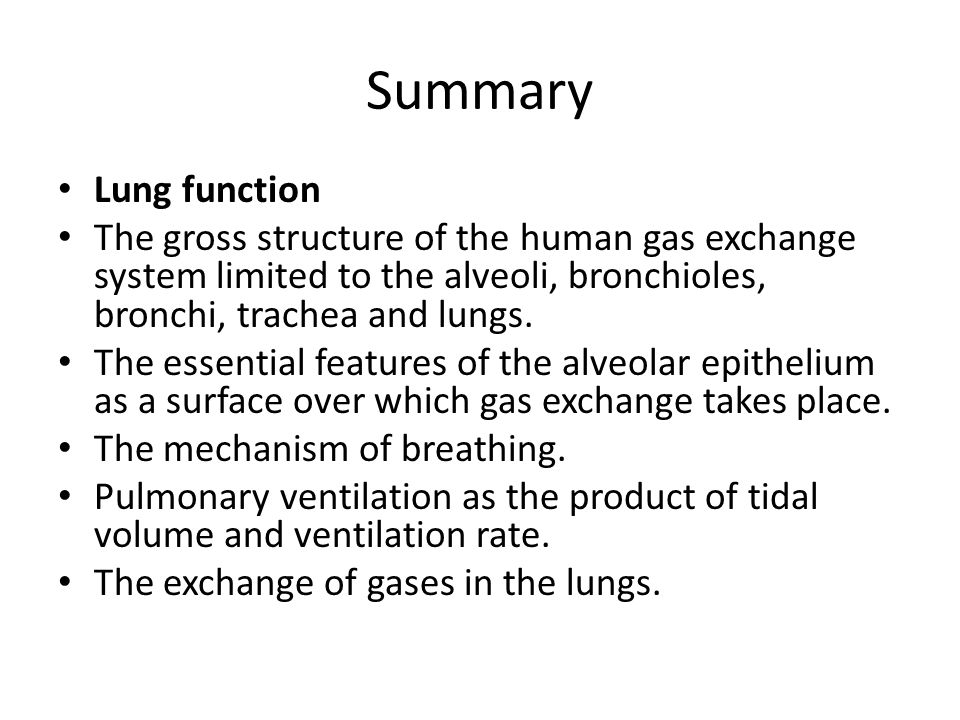Summary Lung function The gross structure of the human gas exchange system limited to the alveoli, bronchioles, bronchi, trachea and lungs.