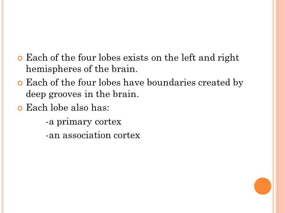 Each of the four lobes exists on the left and right hemispheres of the brain. Each of the four lobes have boundaries created by deep grooves in the br