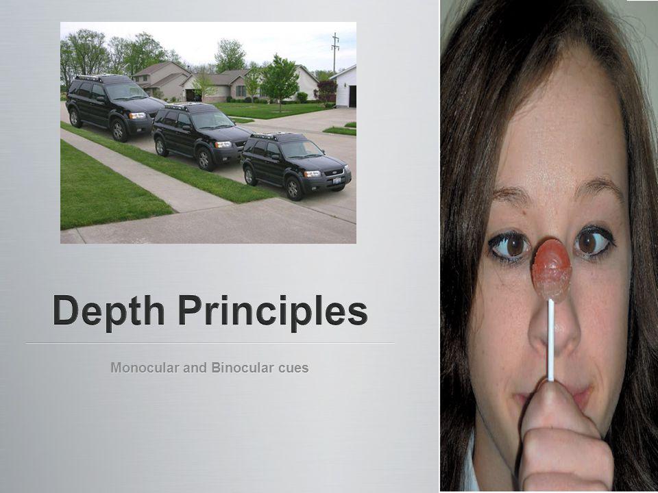 Monocular and Binocular cues