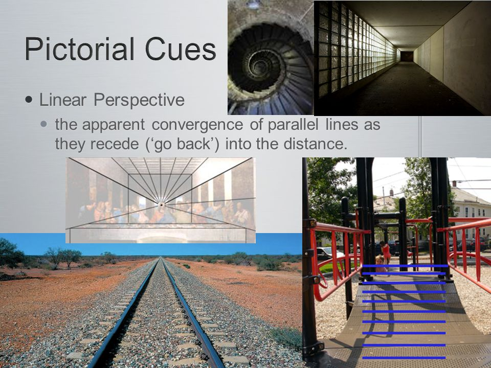 Linear Perspective Linear Perspective the apparent convergence of parallel lines as they recede ('go back') into the distance. the apparent convergenc