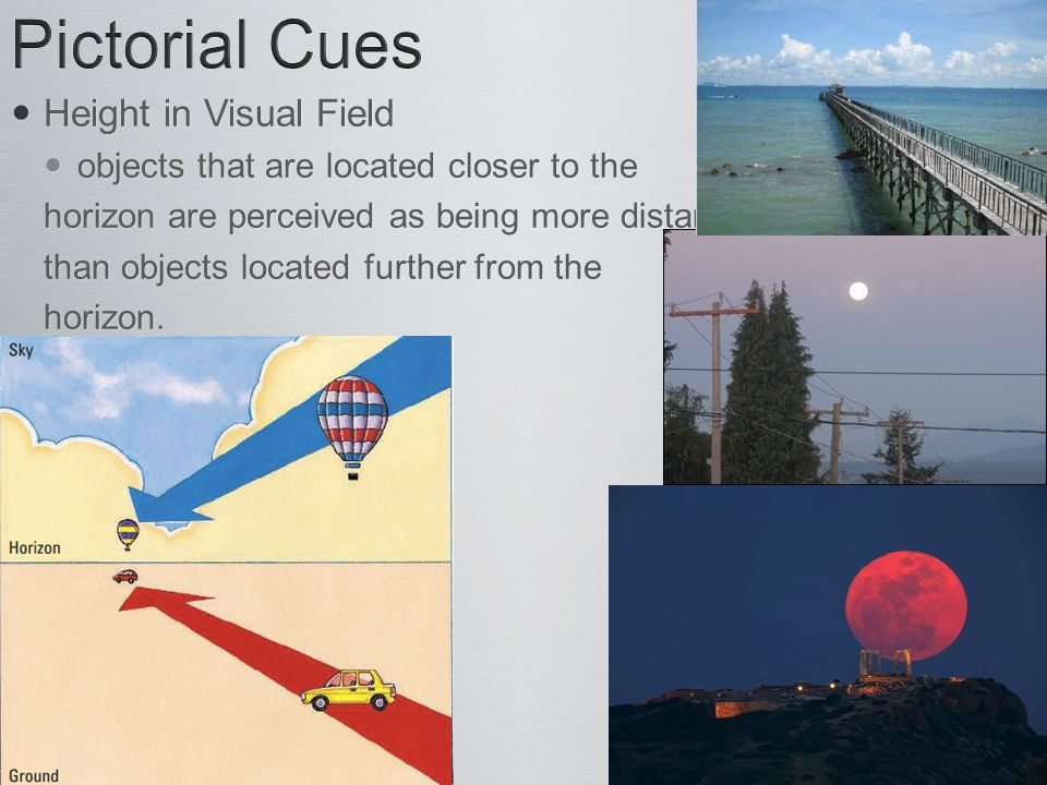 Height in Visual Field Height in Visual Field objects that are located closer to the objects that are located closer to the horizon are perceived as b