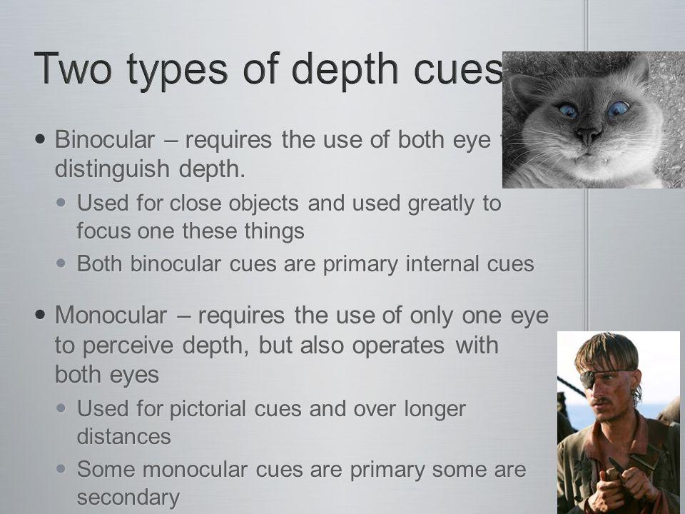 Binocular – requires the use of both eye to distinguish depth.