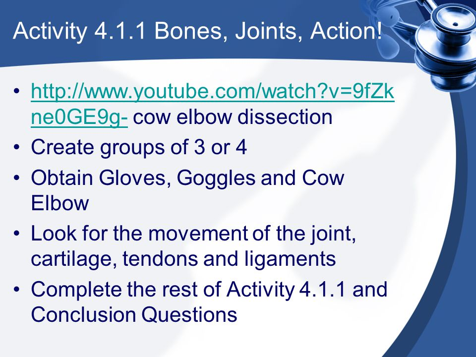 Activity 4.1.1 Bones, Joints, Action! http://www.youtube.com/watch?v=9fZk ne0GE9g- cow elbow dissectionhttp://www.youtube.com/watch?v=9fZk ne0GE9g- Cr