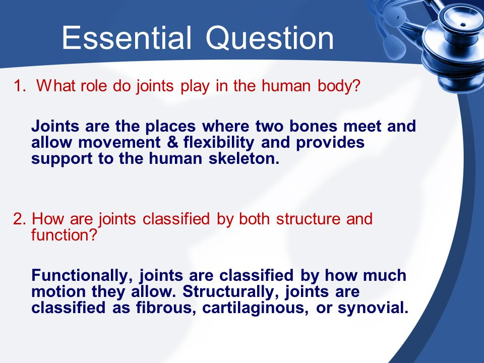 Essential Question 1. What role do joints play in the human body? Joints are the places where two bones meet and allow movement & flexibility and prov