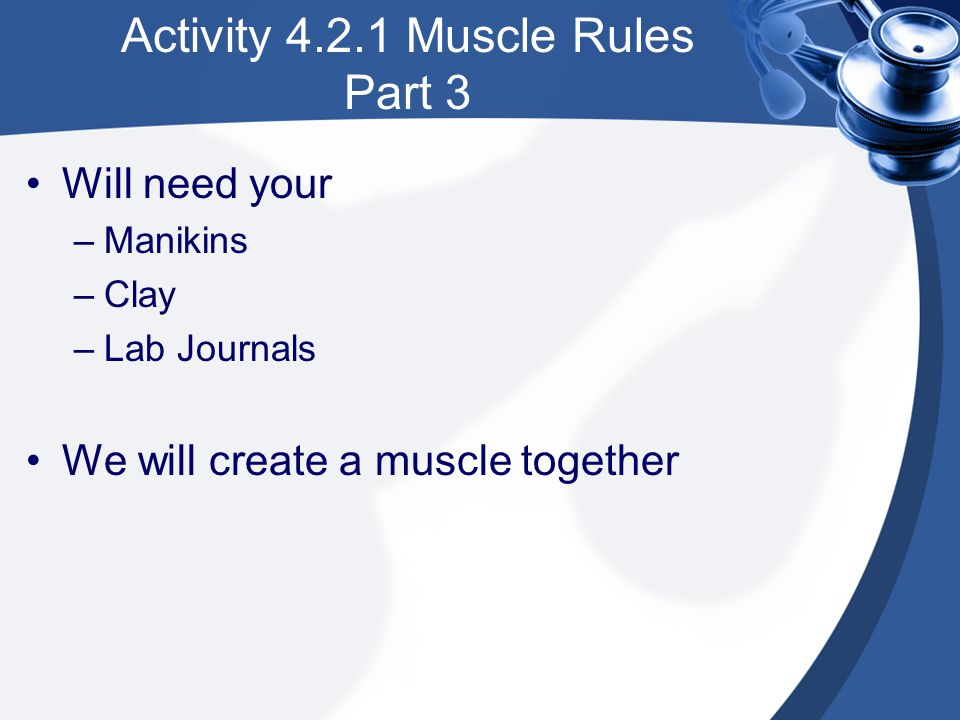 Activity 4.2.1 Muscle Rules Part 3 Will need your –Manikins –Clay –Lab Journals We will create a muscle together