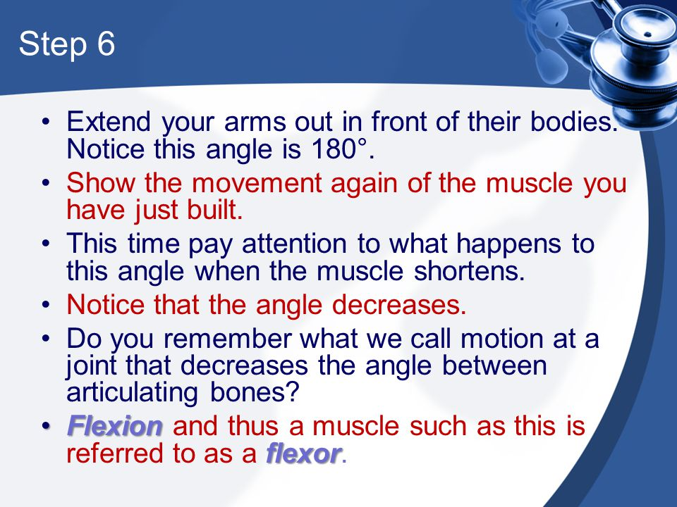 Step 6 Extend your arms out in front of their bodies. Notice this angle is 180°. Show the movement again of the muscle you have just built. This time
