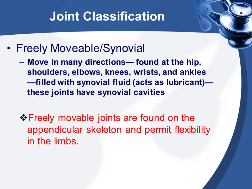 Joint Classification Freely Moveable/Synovial –Move in many directions— found at the hip, shoulders, elbows, knees, wrists, and ankles —filled with sy