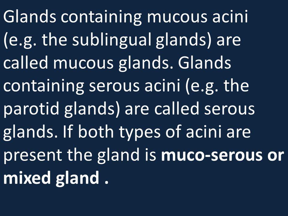 Glands containing mucous acini (e.g. the sublingual glands) are called mucous glands. Glands containing serous acini (e.g. the parotid glands) are cal