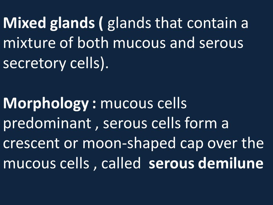 Mixed glands ( glands that contain a mixture of both mucous and serous secretory cells). Morphology : mucous cells predominant, serous cells form a cr