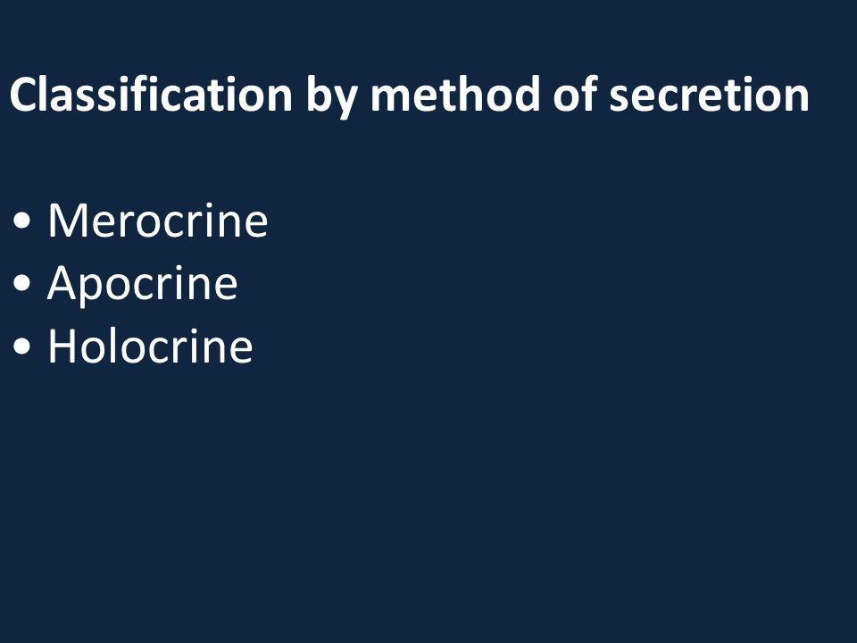 Classification by method of secretion Merocrine Apocrine Holocrine