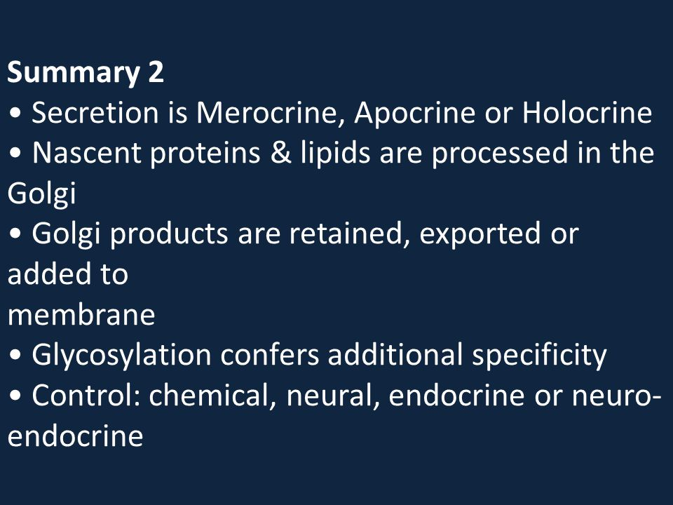 Summary 2 Secretion is Merocrine, Apocrine or Holocrine Nascent proteins & lipids are processed in the Golgi Golgi products are retained, exported or