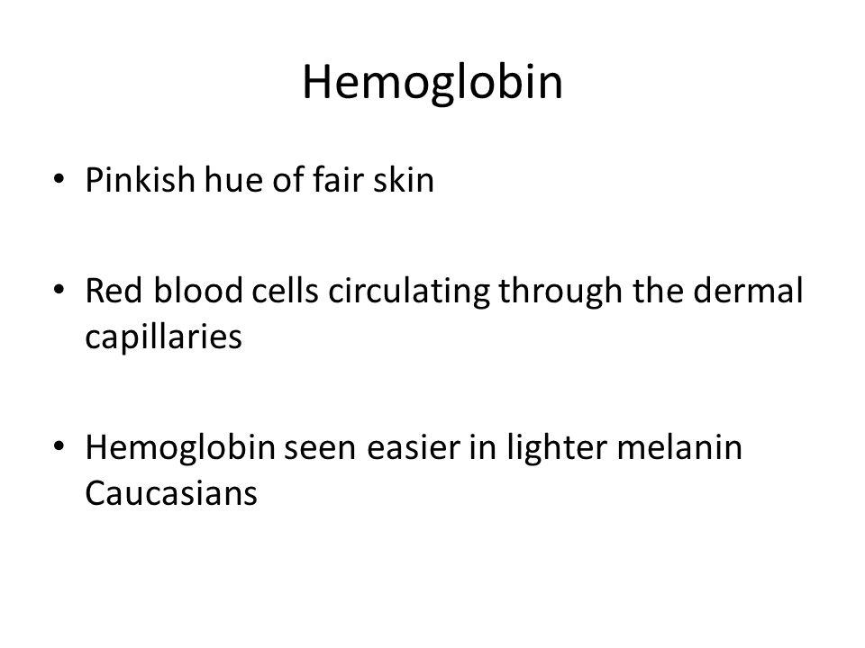 Hemoglobin Pinkish hue of fair skin Red blood cells circulating through the dermal capillaries Hemoglobin seen easier in lighter melanin Caucasians