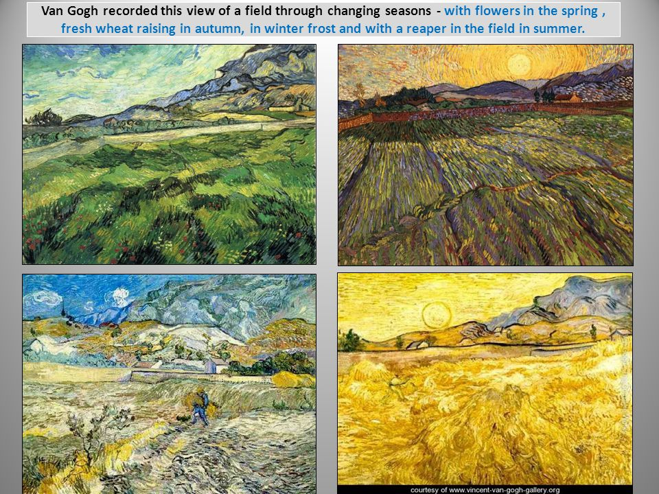 Van Gogh recorded this view of a field through changing seasons - with flowers in the spring, fresh wheat raising in autumn, in winter frost and with a reaper in the field in summer.