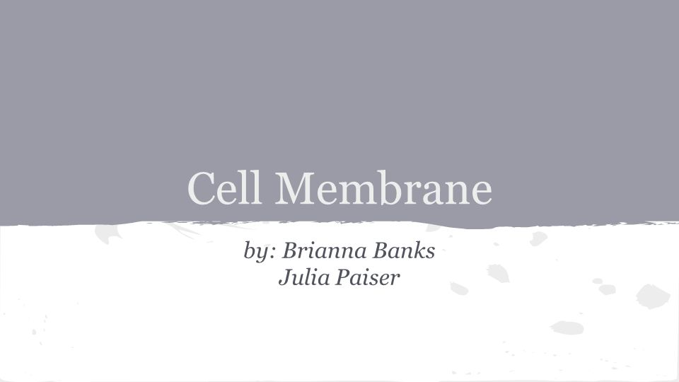 Cell Membrane by: Brianna Banks Julia Paiser