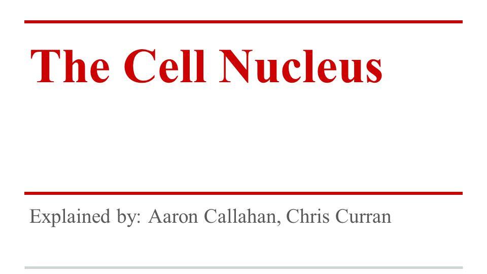 The Cell Nucleus Explained by: Aaron Callahan, Chris Curran