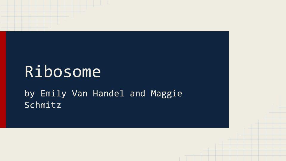 Ribosome by Emily Van Handel and Maggie Schmitz