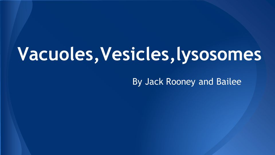 Vacuoles,Vesicles,lysosomes By Jack Rooney and Bailee
