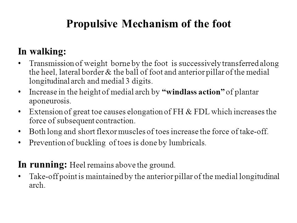 Propulsive Mechanism of the foot In walking: Transmission of weight borne by the foot is successively transferred along the heel, lateral border & the ball of foot and anterior pillar of the medial longitudinal arch and medial 3 digits.