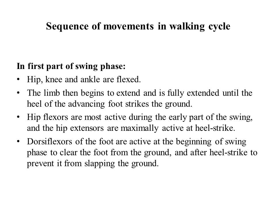 Sequence of movements in walking cycle In first part of swing phase: Hip, knee and ankle are flexed.