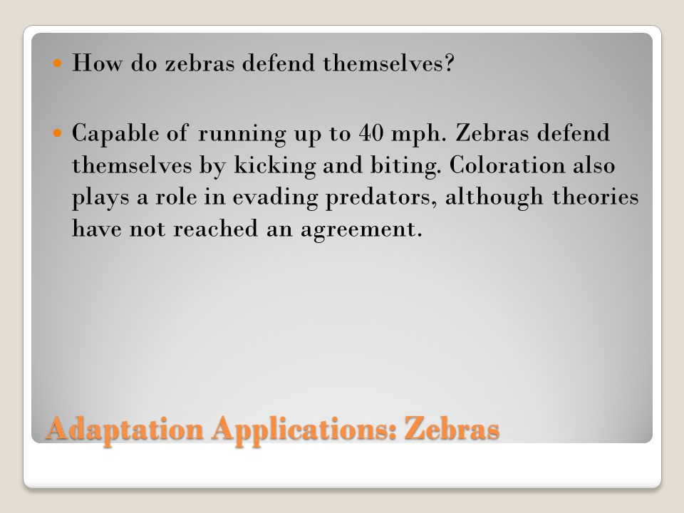 Adaptation Applications: Zebras How do zebras defend themselves? Capable of running up to 40 mph. Zebras defend themselves by kicking and biting. Colo