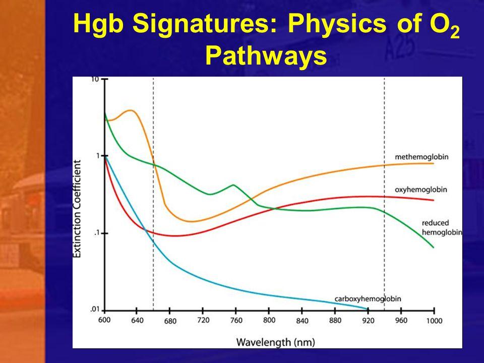 Hgb Signatures: Physics of O 2 Pathways