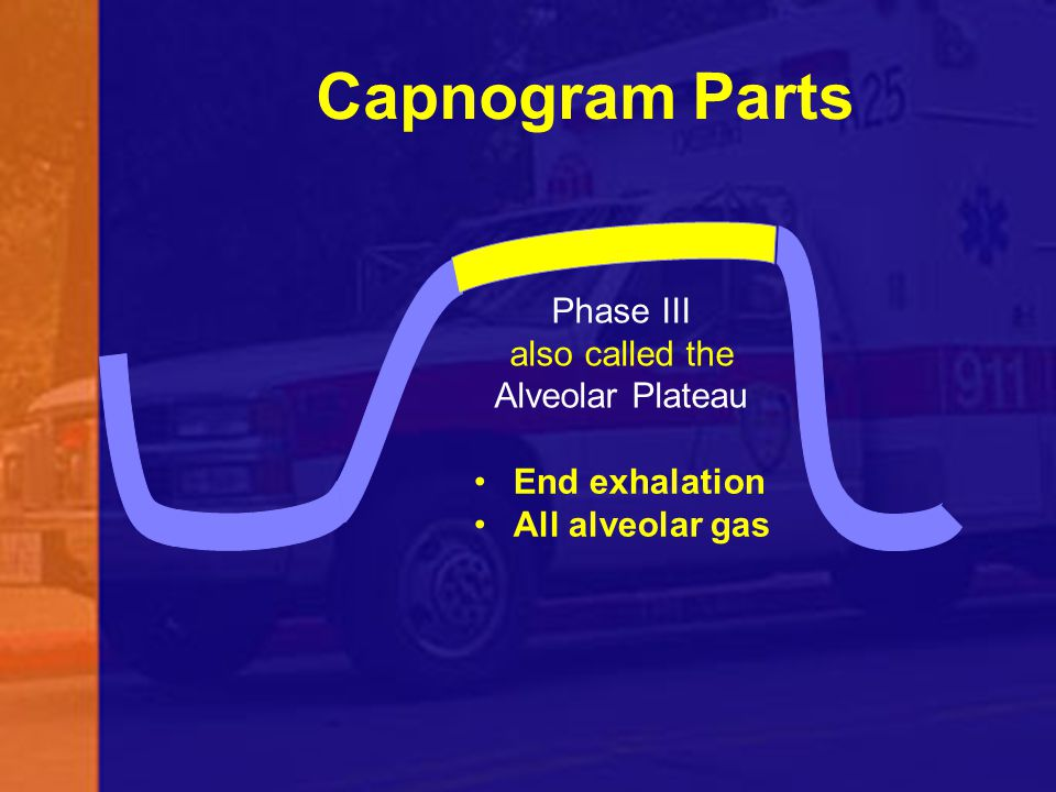 Capnogram Parts Phase III also called the Alveolar Plateau End exhalation All alveolar gas