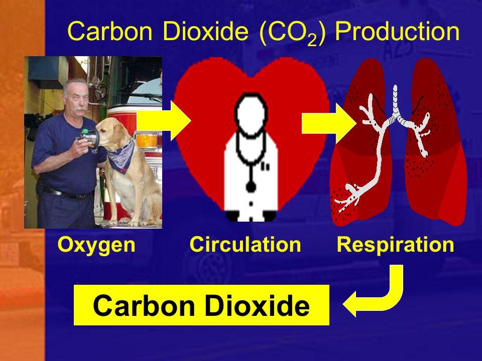 Carbon Dioxide (CO 2 ) Production Oxygen Circulation Respiration Carbon Dioxide