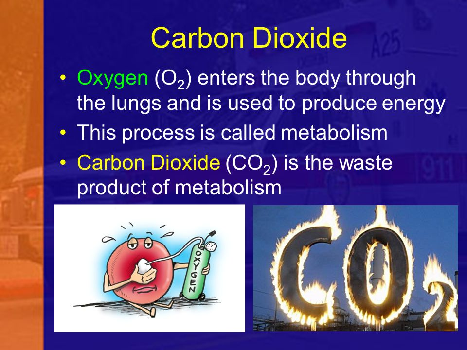 Carbon Dioxide Oxygen (O 2 ) enters the body through the lungs and is used to produce energy This process is called metabolism Carbon Dioxide (CO 2 )