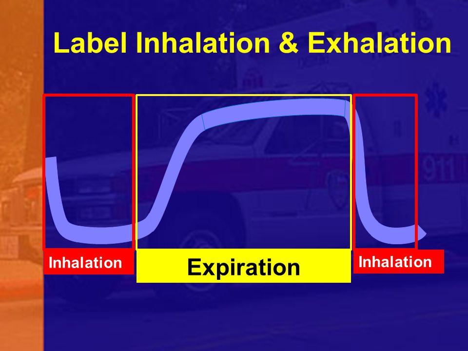 Label Inhalation & Exhalation Expiration Inhalation