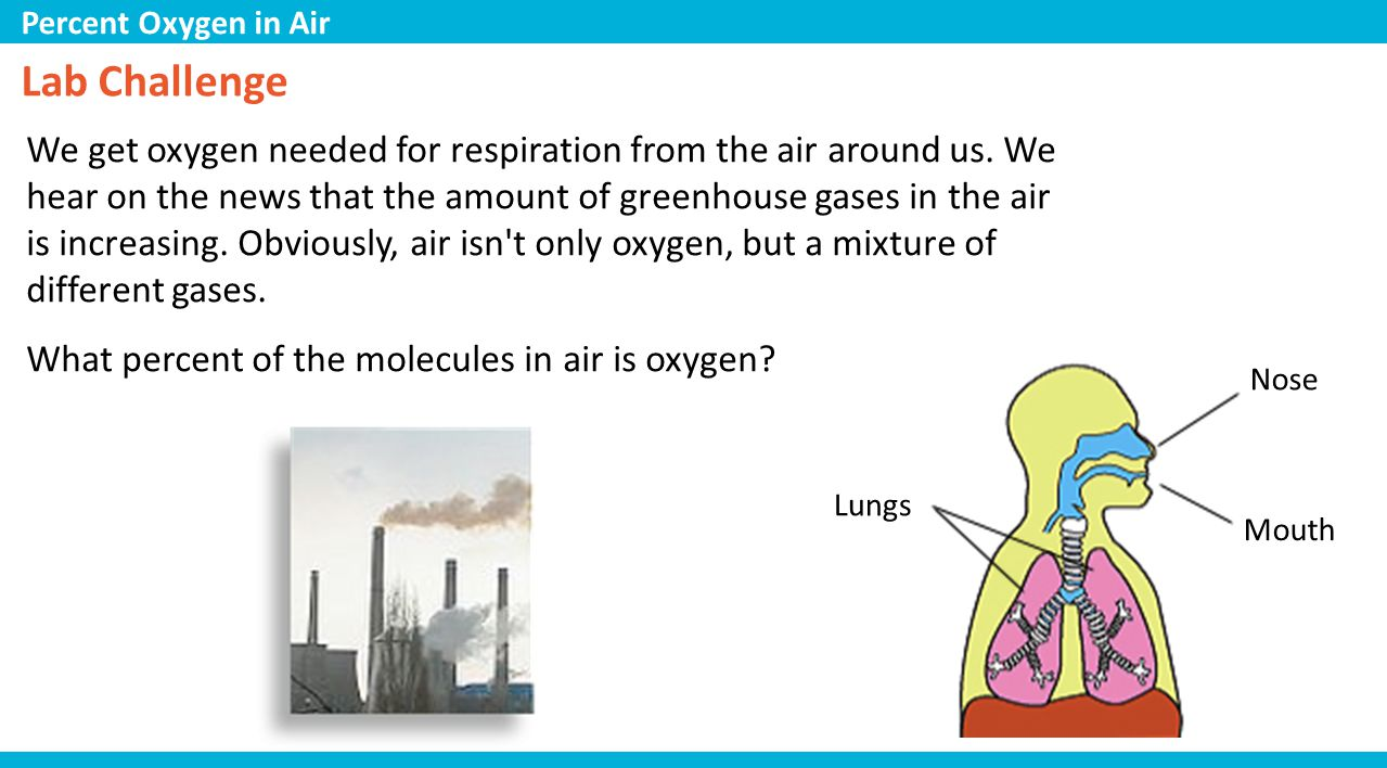 Lab Challenge We get oxygen needed for respiration from the air around us.