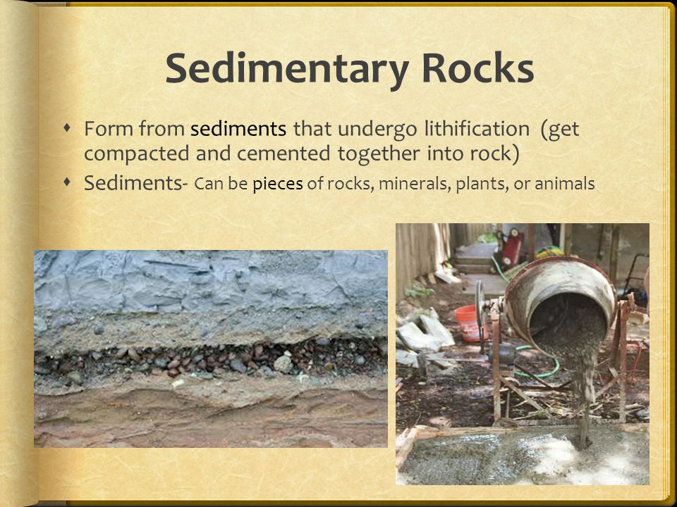 Sedimentary Rocks  Form from sediments that undergo lithification (get compacted and cemented together into rock)  Sediments- Can be pieces of rocks, minerals, plants, or animals