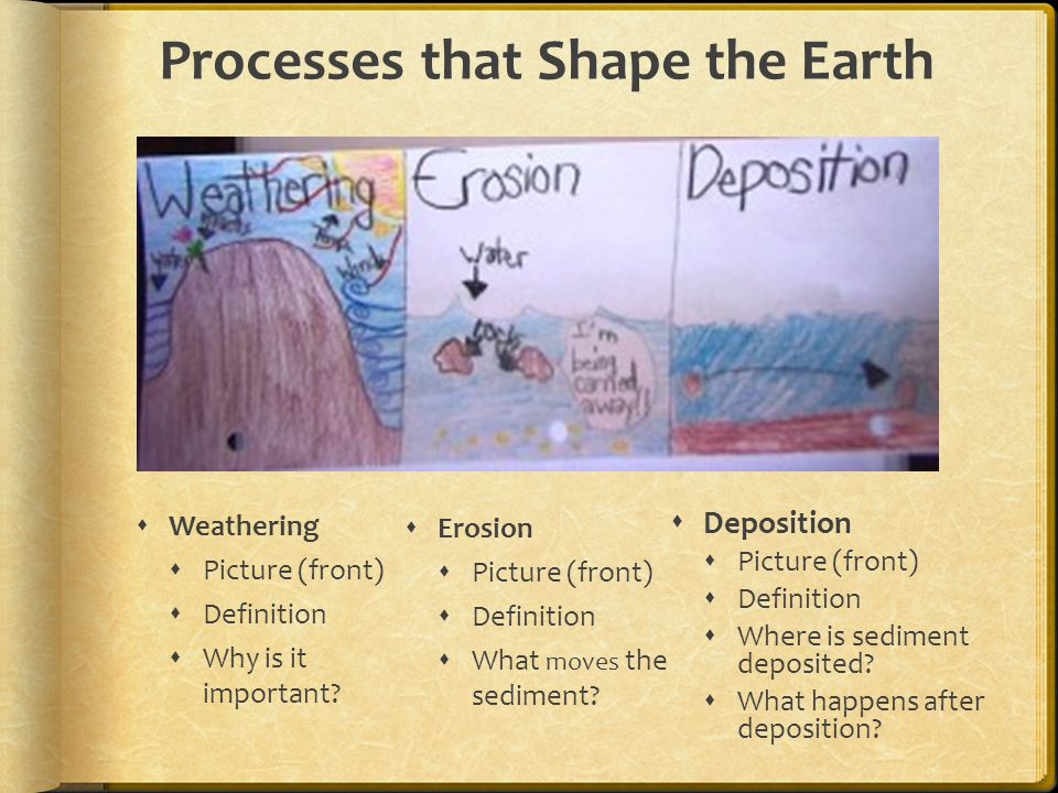 Processes that Shape the Earth  Weathering  Picture (front)  Definition  Why is it important.